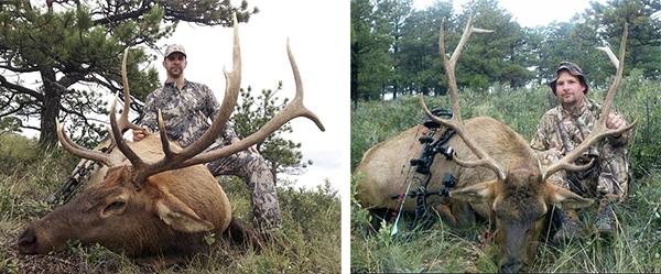 BSC Hunts Specials